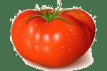салат с говядиной и помидором