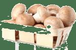 шампиньоны запеченные с сыром